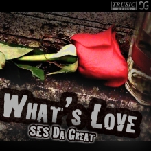 What's Love Cover Art1